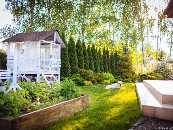 Райский уголок: уютный дачный участок Марты Поточек | Ярмарка Мастеров - ручная работа, handmade