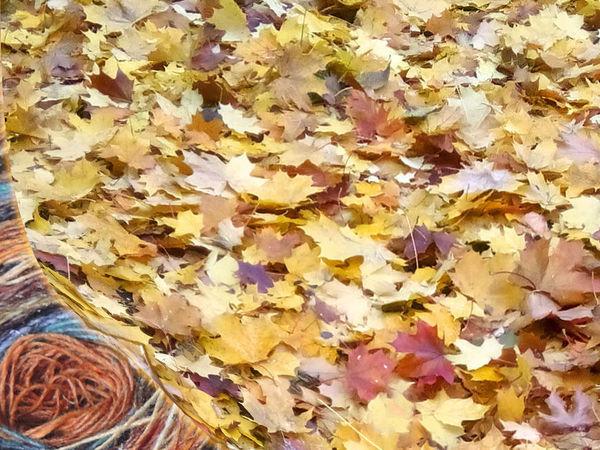 Анонс поставки новых цветов в коллекции Noro   Ярмарка Мастеров - ручная работа, handmade