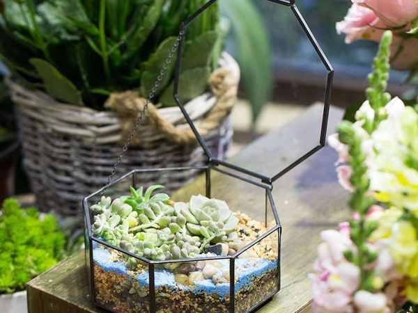 Beauty and Simplicity: 36 Interior Ideas with Succulents | Livemaster - handmade