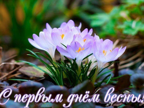 С первым днем весны, красавицы! | Журнал Ярмарки Мастеров