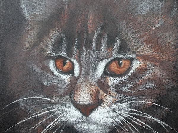 Рисуем пастелью портрет котёнка на тёмной бумаге   Ярмарка Мастеров - ручная работа, handmade