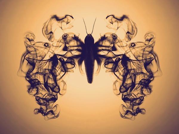 Бомбикс мори, или Почти детективная история о шелкопряде   Ярмарка Мастеров - ручная работа, handmade