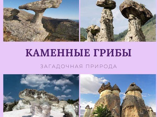 Каменные грибы. Удивительное в природе   Ярмарка Мастеров - ручная работа, handmade