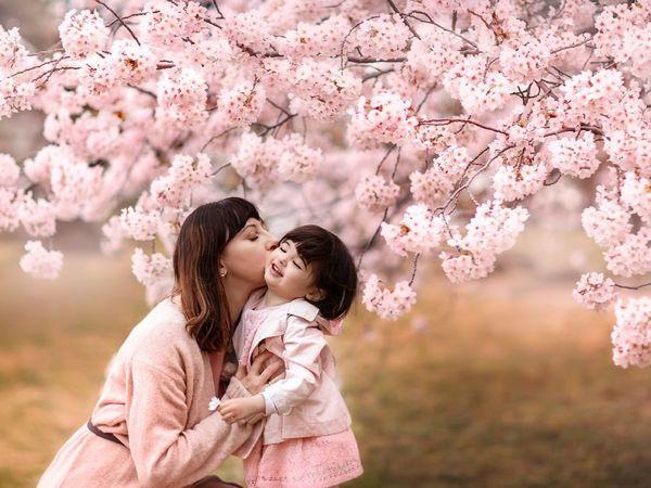 Ханами или праздник цветения сакуры | Ярмарка Мастеров - ручная работа, handmade