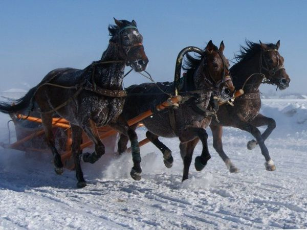 Вот мчится тройка почтовая По Волге-матушке зимой (русская народная песня) | Ярмарка Мастеров - ручная работа, handmade