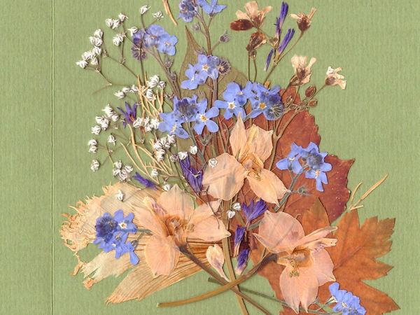 Создание открыточки в технике «Прессованная флористика»   Ярмарка Мастеров - ручная работа, handmade