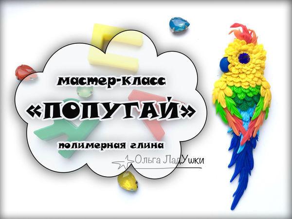 Видеоурок: брошь «Попугай» из полимерной глины | Ярмарка Мастеров - ручная работа, handmade