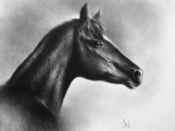 Мастер-класс по сухой кисти  «Лошадь» | Ярмарка Мастеров - ручная работа, handmade