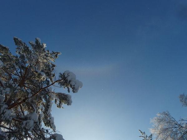 Разве радуга зимой не чудо?! | Ярмарка Мастеров - ручная работа, handmade