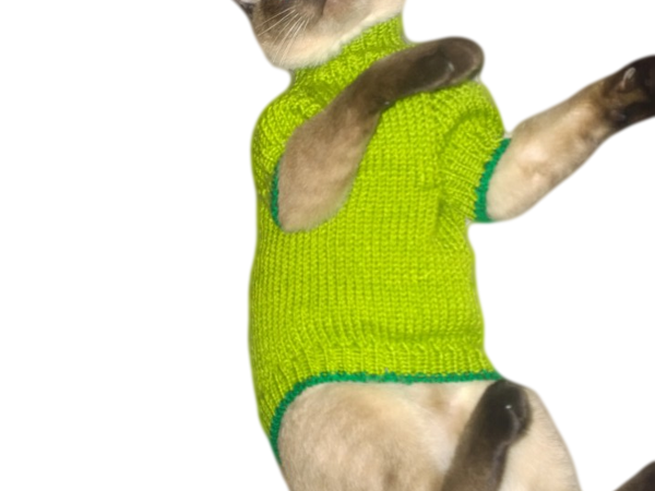 Как кот Барбоскин моделью отказывался быть | Ярмарка Мастеров - ручная работа, handmade