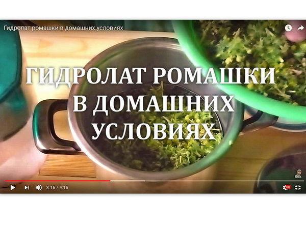 Видео мастер-класс: процесс получения гидролата ромашки в домашних условиях | Ярмарка Мастеров - ручная работа, handmade