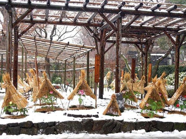 «Зимние пионы»  в Японии | Ярмарка Мастеров - ручная работа, handmade