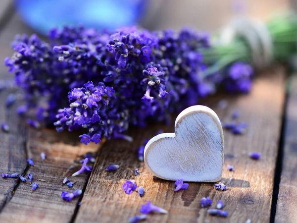 Лавандовый цвет и лавандовая ароматерапия.   Ярмарка Мастеров - ручная работа, handmade