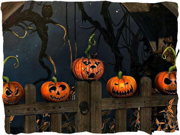 Аукцион на 'Halloween' (завершён) | Ярмарка Мастеров - ручная работа, handmade