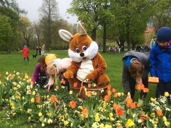 Куда прячет немецкий пасхальный заяц подарки   Ярмарка Мастеров - ручная работа, handmade