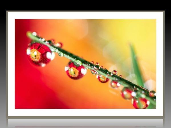 Фотопостеры - рисунок объективом? | Ярмарка Мастеров - ручная работа, handmade