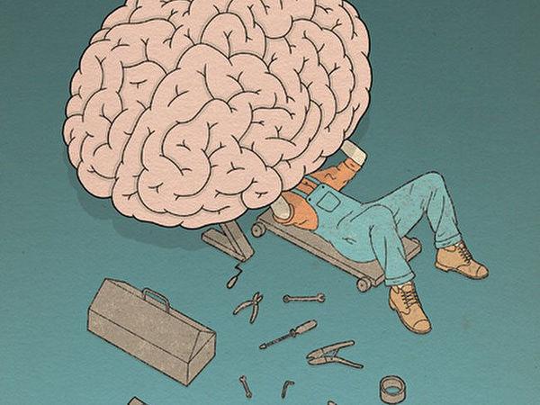 Ваш мозг может всё.  Абсолютно всё.   Ярмарка Мастеров - ручная работа, handmade