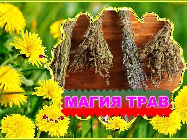 Магия трав | Ярмарка Мастеров - ручная работа, handmade
