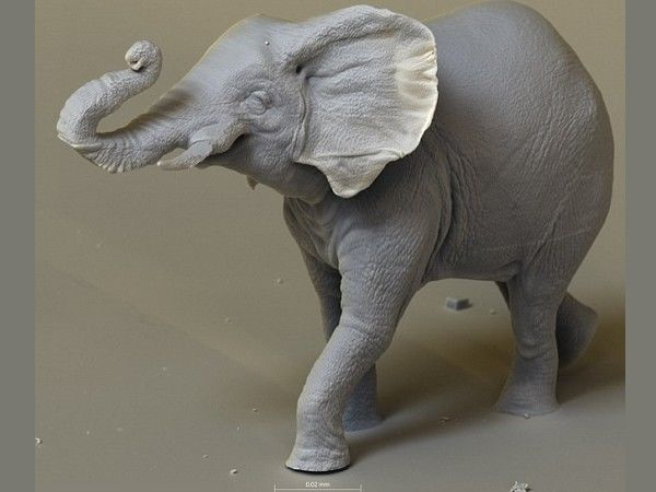 Левша очень бы удивился! Самые маленькие скульптуры в мире Джонти Гурвица   Ярмарка Мастеров - ручная работа, handmade