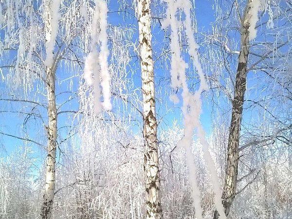 Аукцион Самарские Сезоны. Зимняя Рыбалка! | Ярмарка Мастеров - ручная работа, handmade