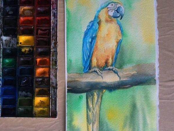 Видео мастер-класс по живописи: пишем акварелью попугая | Ярмарка Мастеров - ручная работа, handmade