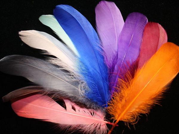 Новое поступление перьев гуся!   Ярмарка Мастеров - ручная работа, handmade