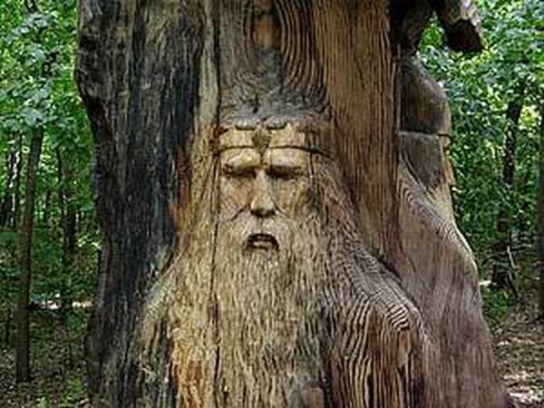 Живые души деревьев Полная версия публикации | Ярмарка Мастеров - ручная работа, handmade