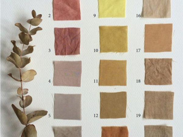 Окрашивание натуральными красителями | Ярмарка Мастеров - ручная работа, handmade