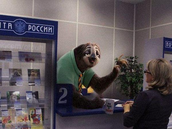 Картинка ленивца почта россии