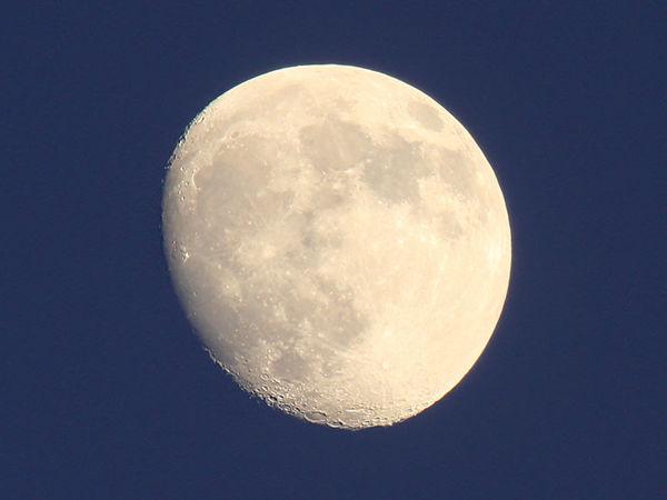 Люблю Луну | Ярмарка Мастеров - ручная работа, handmade