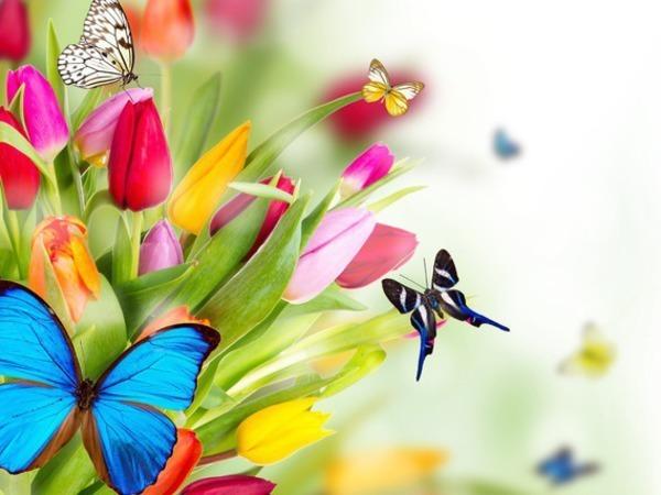 Совместный аукцион ВеснаЛюбовьЦветы | Ярмарка Мастеров - ручная работа, handmade