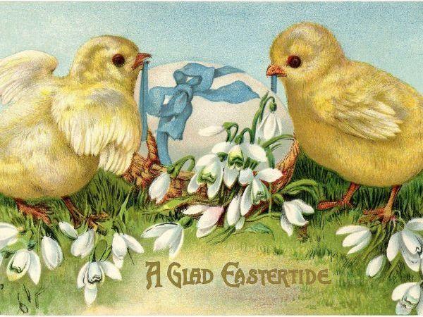 Цыплятки к Пасхе!!! Розыгрыш! Доставка — бесплатно! | Ярмарка Мастеров - ручная работа, handmade