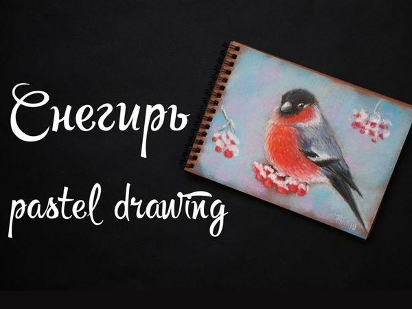 Video Tutorial: Bullfinch Pastel Drawing | Livemaster - hecho a mano - handmade