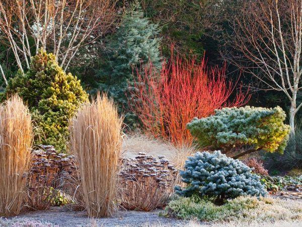 Идеи для зимнего сада | Ярмарка Мастеров - ручная работа, handmade