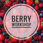 Berry Workshop - Ярмарка Мастеров - ручная работа, handmade