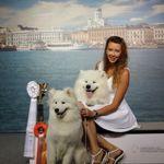 Svetlana (Lana2rock) - Ярмарка Мастеров - ручная работа, handmade