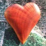 baikal-wood