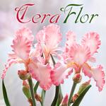 CeraFlor - полимерная флористика - Ярмарка Мастеров - ручная работа, handmade