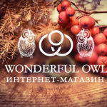 wonderful-owl