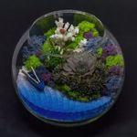 Флорариумы: живые подарки! - Ярмарка Мастеров - ручная работа, handmade