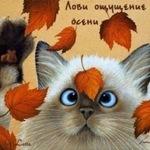 Veronika-mos - Ярмарка Мастеров - ручная работа, handmade