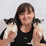 Елена пошив одежды для собак (Favoritesofis) - Ярмарка Мастеров - ручная работа, handmade