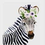 zebra-hobby