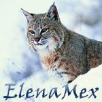 elenamex