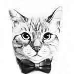 luckycat-tver