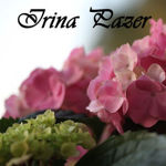 irina-pazer