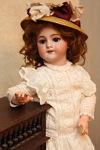 daria-dolls