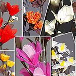 flower-svet