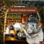 zapaslivaya-mysh-1001-meloch