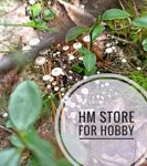 hm-store-for-resin